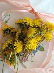 dandelions on table