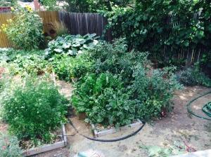 the 2014 garden